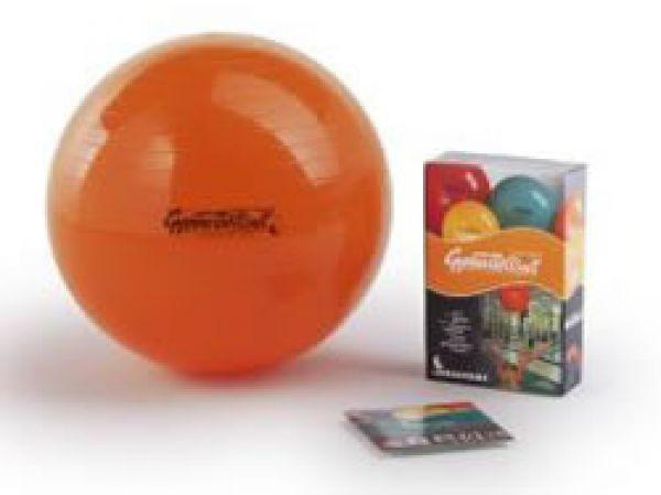 Original Pezzi Ball Standard 53cm